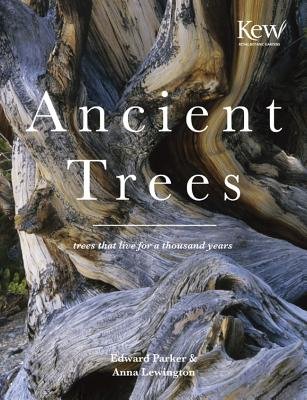 Ancient Trees By Lewington, Anna/ Parker, Edward (PHT)